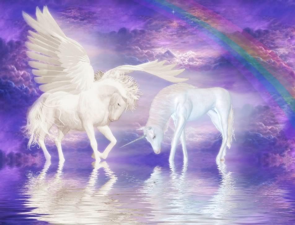 Pegasus and Unicorn  Pegasus