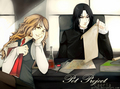 Pet Project Fanarts - hermione-and-severus photo