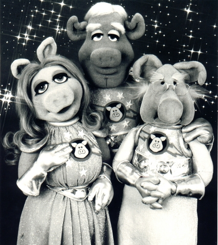 The Muppets wallpaper entitled Pigs in Space