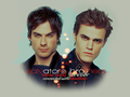 Salvatore Brothers Fanart - damon-and-stefan-salvatore fan art