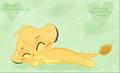 Simba Sleeps