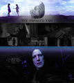 Snape and Lily - severus-snape-and-lily-evans fan art