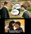 The Truth About Cedric Diggory :)