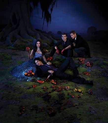 The Vampire Diaries - Season 3 - Promotional Poster [HQ]