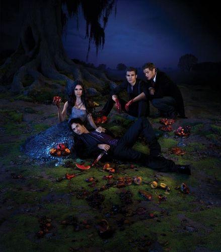 The Vampire Diaries Season 3 Promotional Poster