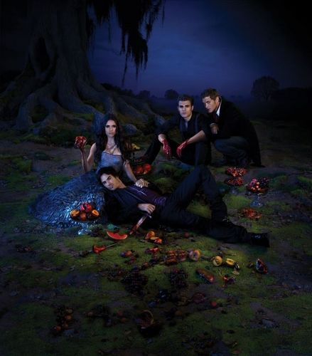 The Vampire Diaries Season 3 Promotional Poster