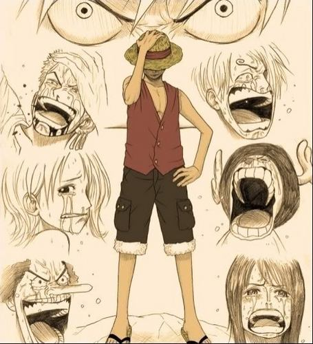 One Piece wallpaper probably with anime entitled You made them cry...