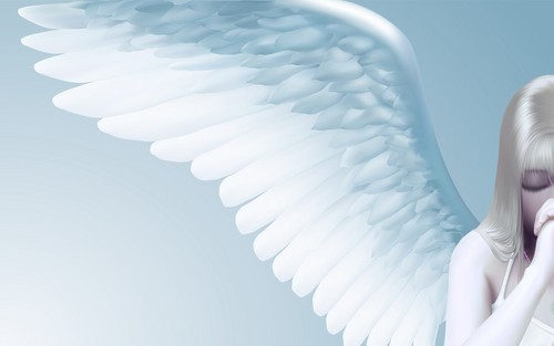 angeli wallpaper entitled Angel wings