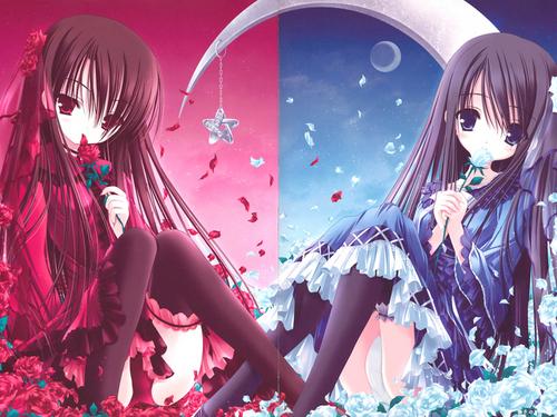 anime_twins