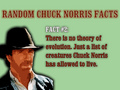 no evouloution read this its the law - chuck-norris photo