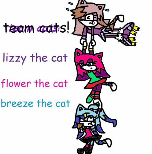 team Кошки