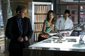 10.02-Stiff-Promo - csi-miami photo