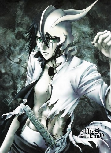 Bleach Anime Wallpaper Possibly With A Breastplate And Called Arrancar