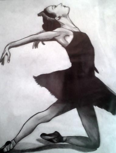 Black cigno