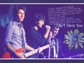 Can't have you - the-jonas-brothers wallpaper