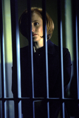 Dana Scully