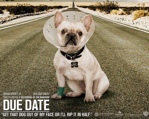 Due Date!