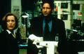 Fight The Future - the-x-files photo