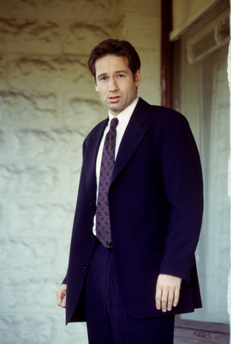 لومڑی Mulder