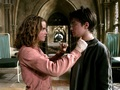 Harry and Hermione Wallpaper - harry-and-hermione wallpaper