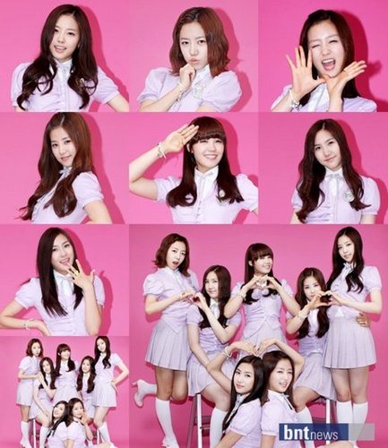 Korea Girls Group A Pink wallpaper possibly containing a portrait titled Korean Girls Group A-Pink