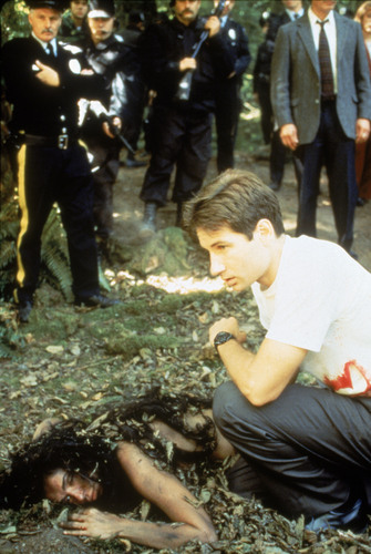 The X-Files achtergrond probably containing a mulch, a green beret, and a door catch entitled Mulder