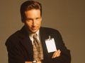 Mulder - the-x-files wallpaper