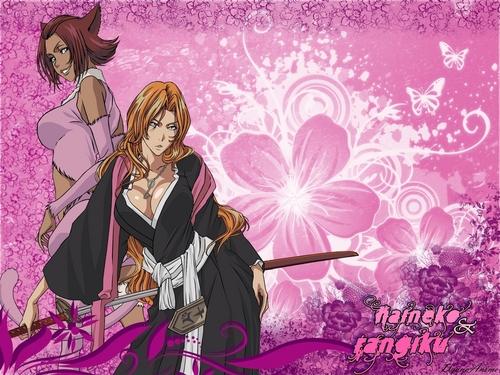 Rangiku and Haineko
