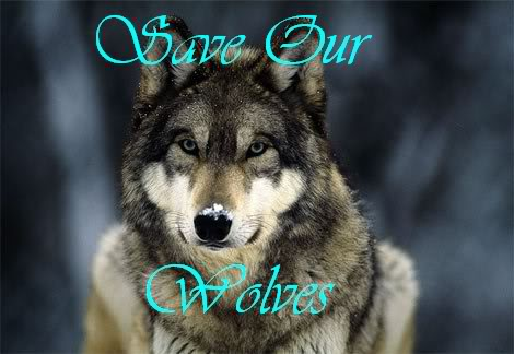SOW- SAVE OUR WOLVES!
