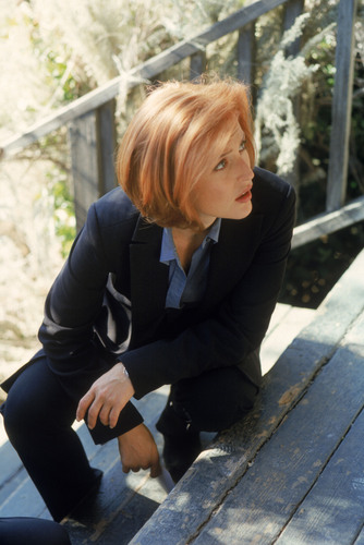 The X-Files wallpaper containing a business suit titled Scully