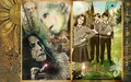 Severus Snape wallpapers - severus-snape wallpaper