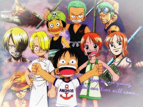 One Piece wallpaper containing anime titled Straw Hat Pirates