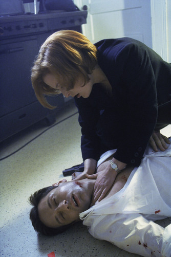 The X-Files achtergrond possibly with a neonate called The X-Files