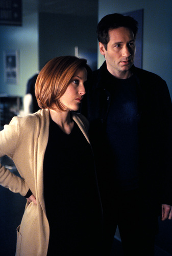 The X-Files achtergrond possibly with an outerwear and a well dressed person called The X-Files