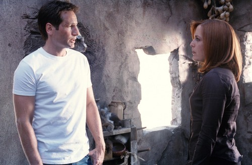 The X-Files Обои titled The X-Files