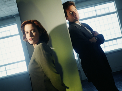 The X-Files wallpaper containing a business suit entitled The X-Files