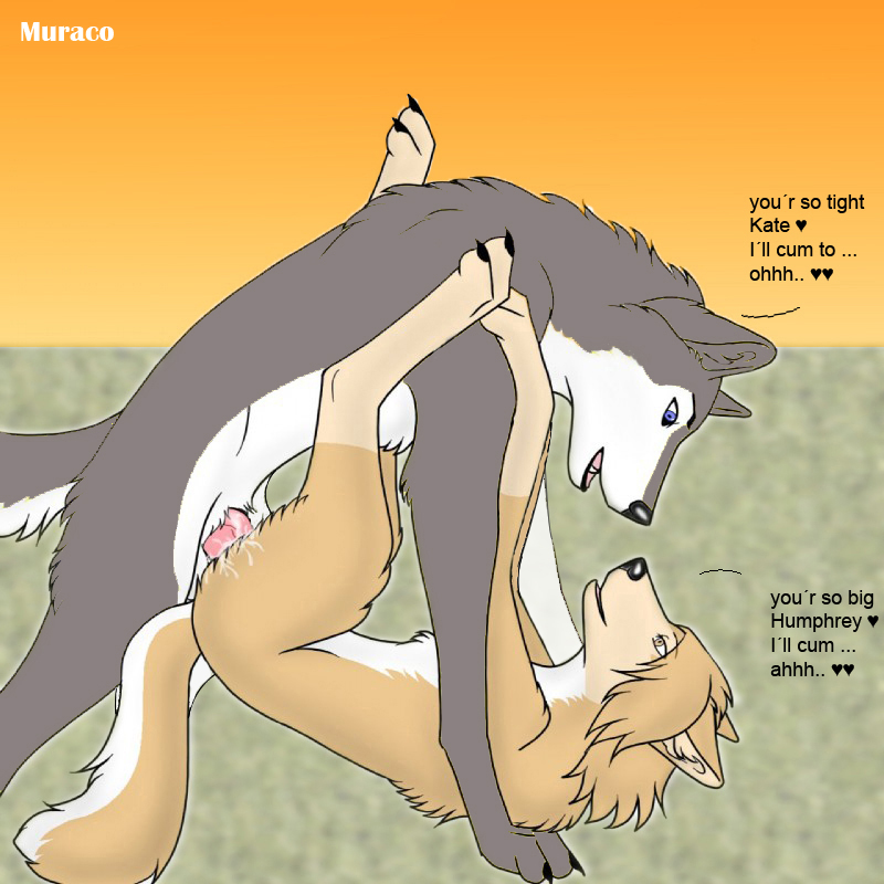 Furry Wolf Alpha And Omega Porn