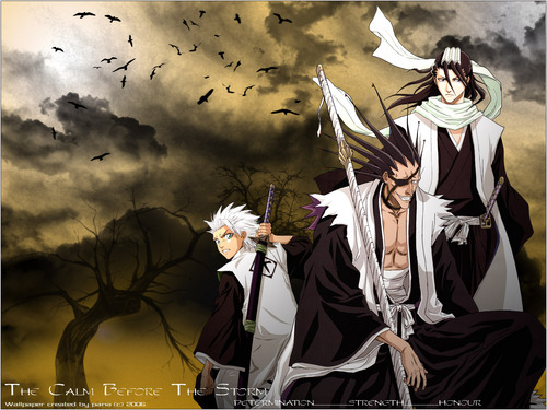 Bleach Anime images captains HD wallpaper and background ...