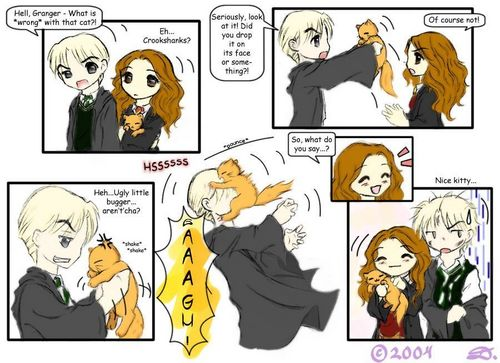 Harry Potter fond d'écran probably with animé entitled draco vs crookshanks