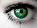 green eyes - eyes photo