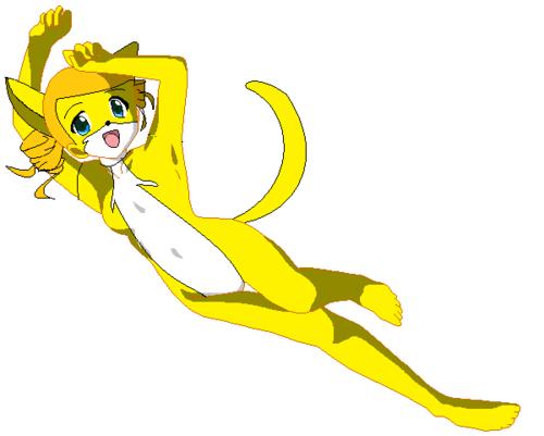 myako cat