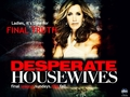 season 8 promo wallpaper - desperate-housewives wallpaper