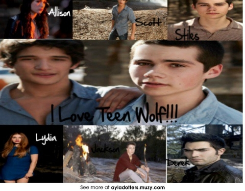 Werewolves wallpaper possibly containing a street, a sign, and a business district called teen wolf