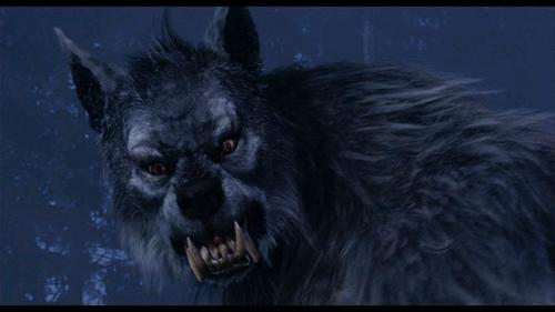 hombres lobo