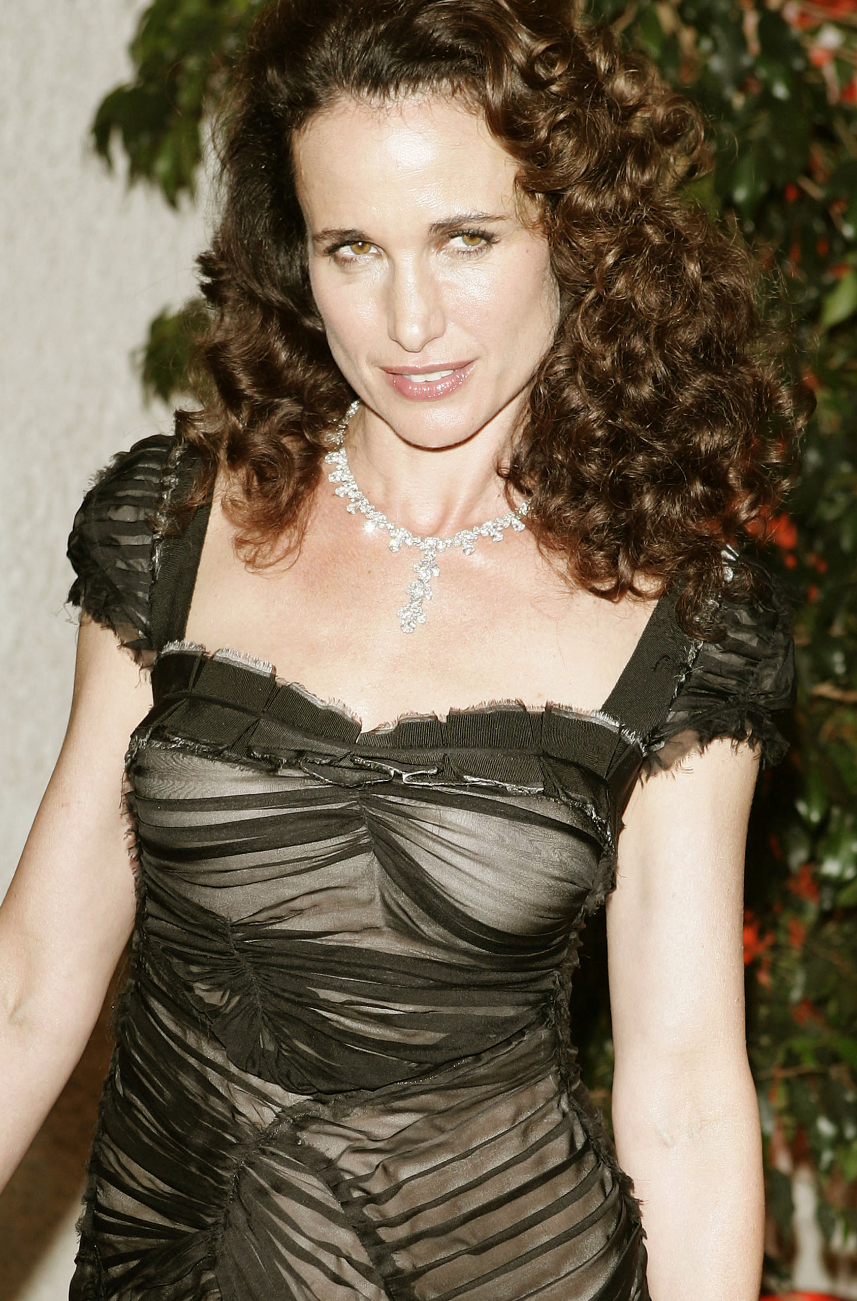 Andie MacDowell naked (74 fotos), images Sideboobs, YouTube, bra 2015