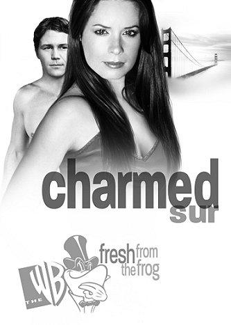 चार्म्ड Promos Season 6