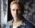 daniel-craig - Daniel Craig<3 wallpaper