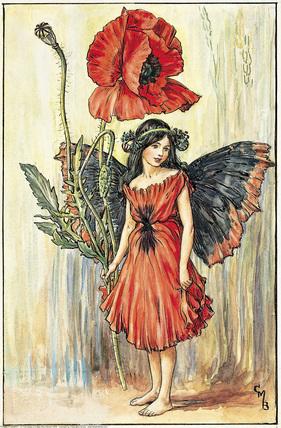 bulaklak Fairy