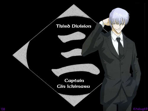 Ichimaru gin wallpaper probably containing a business suit called gin