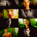Jacob Black : ) - jacob-black-and-leah-clearwater photo